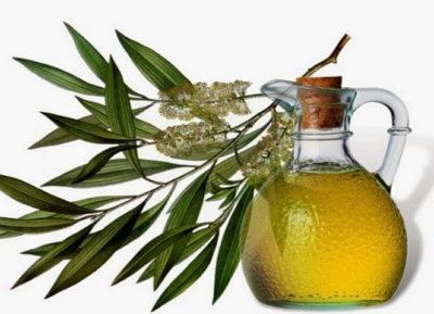 Tea Tree Oil During Pregnancy