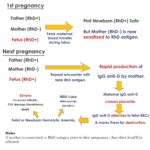 RH Incompatibility In Pregnancy