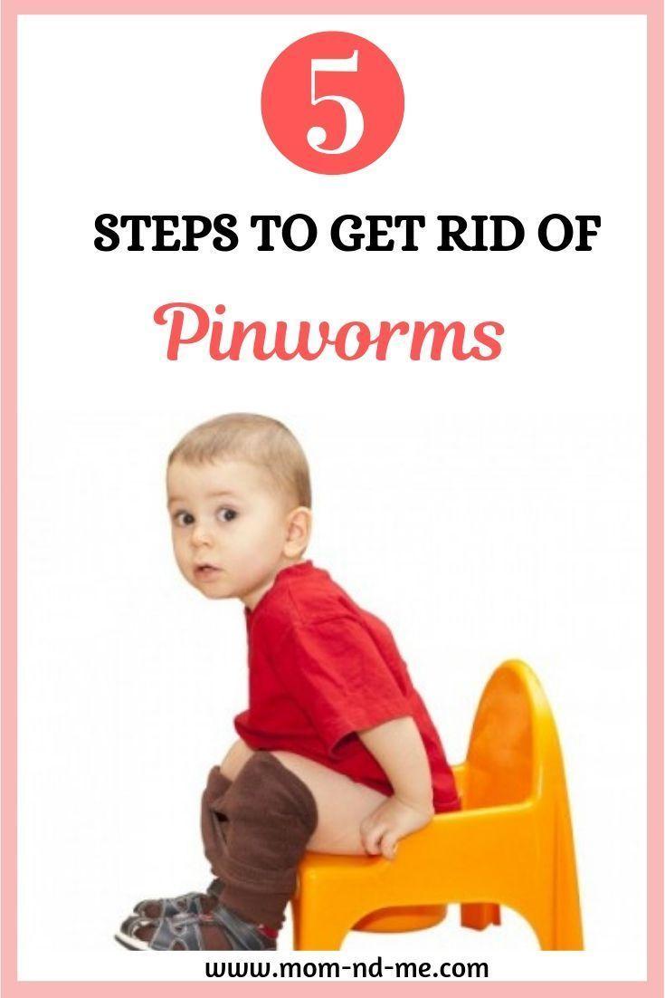 Pinworms In Children 5