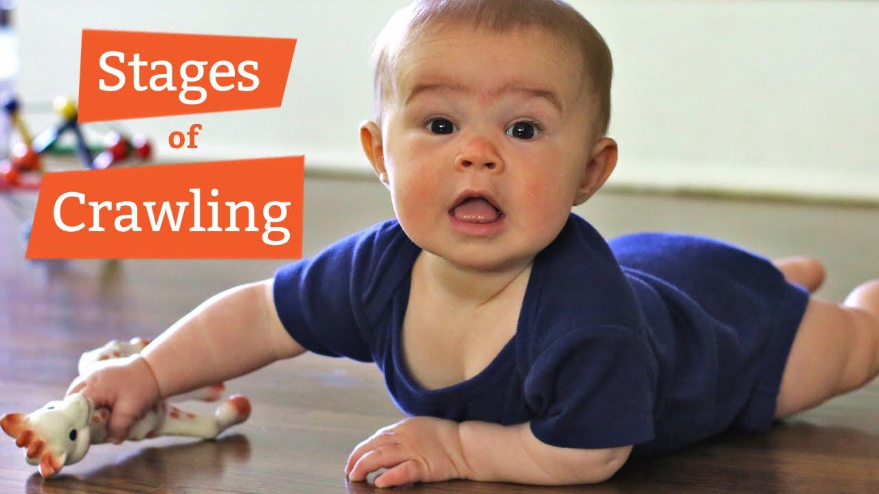 When Do Babies Start Crawling 2