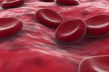 Blood Clotting During Pregnancy