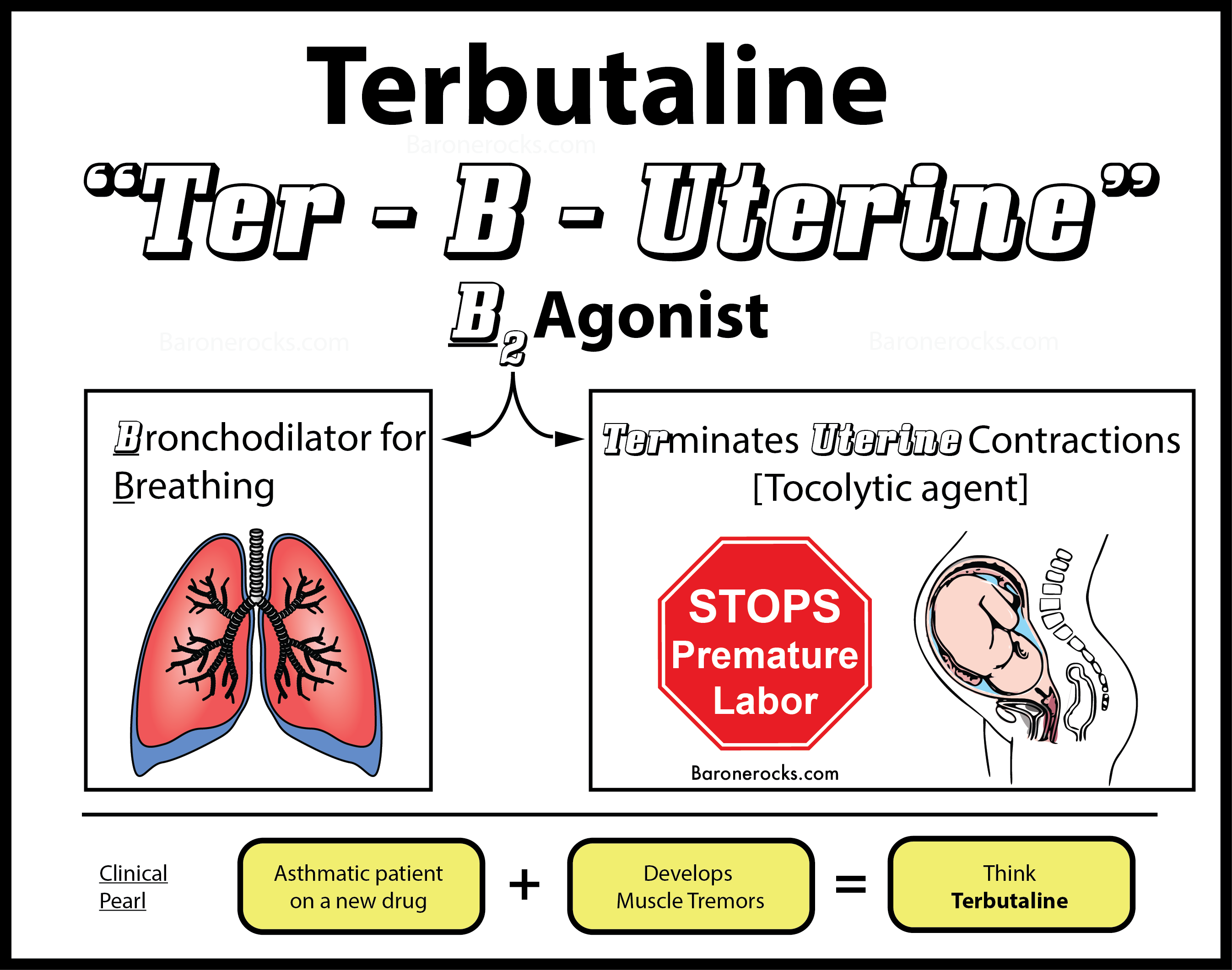 Terbutaline in Pregnancy
