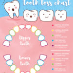 Losing Baby Teeth in Kids