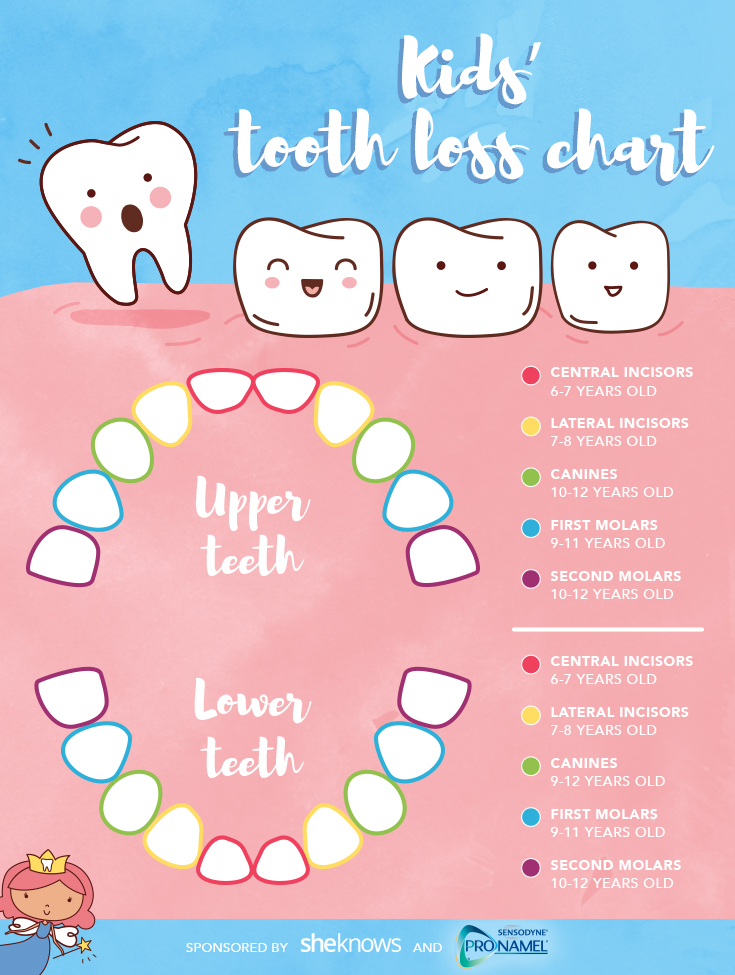Losing Baby Teeth in Kids